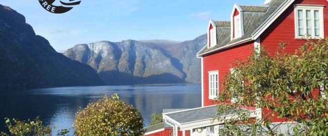 Norvège sans gluten