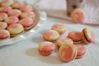 macarons bicolore