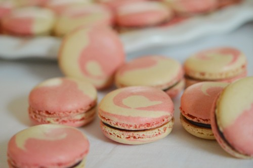macarons bicolore sans gluten
