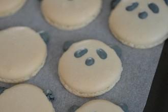macarons coques pandas