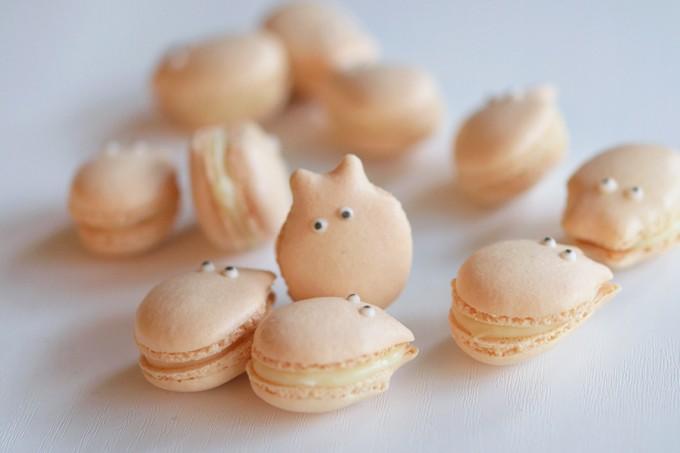 macarons petit totoro