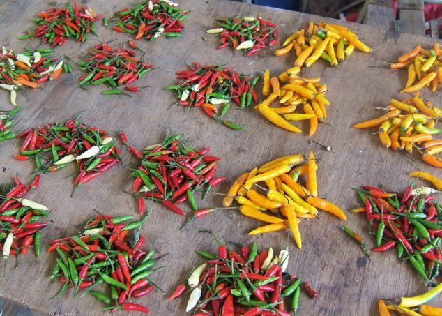 chilli seychelles