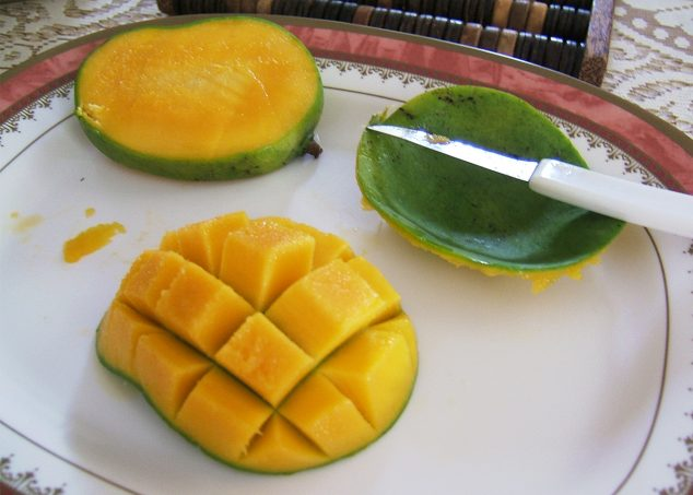 mangue seychelles