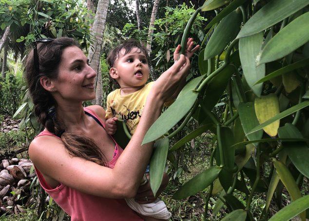 plantation de vanille La Digue seychelles